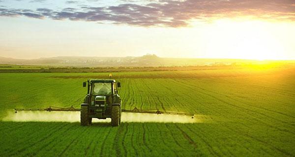alberta net farm income