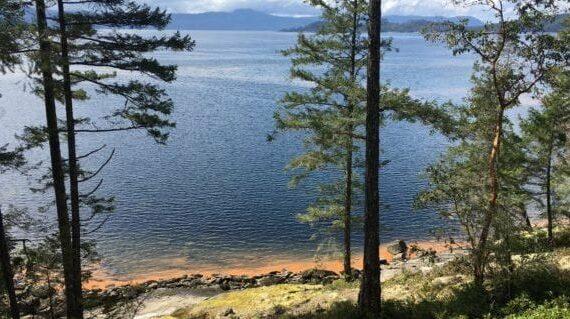 Spring surprises at Skelhp: red tide and Cuddles